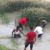 Canal cleaning, Tamil Nadu